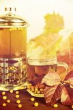 Therapeutic tea from seasonal sea buckthorn berries to maintain immunity Royalty Free Stock Images