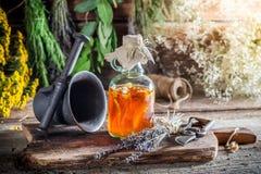 Therapeutische kruiden in flessen met kruiden en alcohol stock fotografie