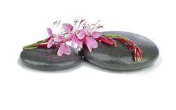 Therapeutische Zen-/Badekurortsteine mit Blumen Lizenzfreies Stockfoto