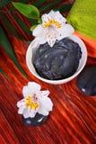 Therapeutischer Lehm in der Schüssel Lizenzfreies Stockfoto