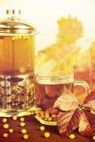 Therapeutischer Tee von den Saisonsanddornbeeren, zum von Immunität beizubehalten Lizenzfreie Stockbilder