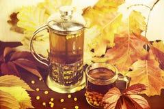 Therapeutischer Tee von den Saisonsanddornbeeren, zum von Immunität beizubehalten Lizenzfreies Stockfoto