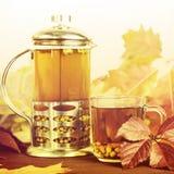 Therapeutischer Tee von den Saisonsanddornbeeren, zum von Immunität beizubehalten Stockfotografie