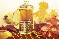 Therapeutischer Tee von den Saisonsanddornbeeren, zum von Immunität beizubehalten Lizenzfreie Stockfotografie