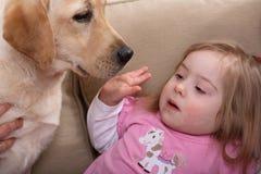 Therapie-Hund und kleines Mädchen stockbilder