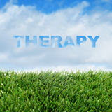Therapy. Closeup of grass over the sky with clouds and the word therapy stock photos