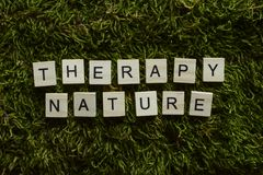 Therapy nature written with wooden letters cubed shape on the green grass. royalty free stock photos