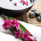 Therapy with orchids and hot stones Stock Image
