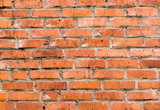 There is a brick wall just in front of my window. Orange brick wall. So bright royalty free stock image