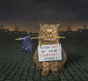 Cat changes his life 2. There is a cat with a sign around his neck. It says ` Step out of your comfort zone royalty free illustration