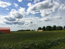 Nature. Cumulus clouds. Meadow Stock Photos