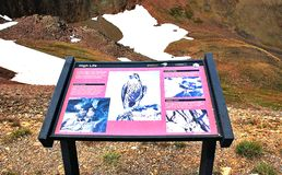 Rocky mountain colorado educational marker sign. There is educational information outdoor sign for visitors of Rocky Mountain , Colorado, USA , which located in stock image