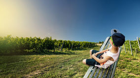 There is a grape line royalty free stock photography