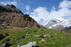 Spring view of the Pyrenees mountains Stock Photos