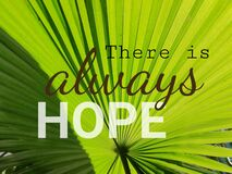 Free There Is Always Hope, Message On Green Palm Tree Leaf. Stock Photos - 204301193