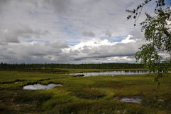 There is lake in the green meadow. There are many white clouds in the dark blue sky.  Stock Image