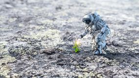 There is life on moon. Mixed media Royalty Free Stock Images
