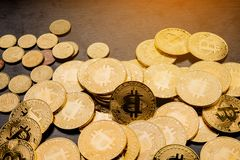 There are many coin coins. My hands and money Financial planning The concept of businessmen stock images