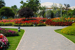 There are many colorful flower garden at home. Stock Image