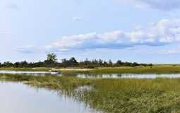 New york long island sunken meadow estuary activity stock image