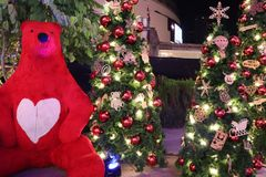 Red bear with Christmas tree stock images