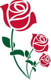 There roses. Illustration art of a there roses with isolated background Royalty Free Stock Photos