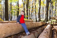 There`s a boy in the woods on huge trees. Stock Photo