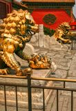 Couple bronze lions guarding the entrance to the inner palace of the Forbidden City. Beijing royalty free stock images
