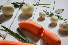 There are some green,carrots and white onions Stock Images