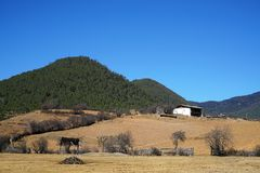 Farm Field in Winter. There are some trees and houses in farm field without grass in winter.Taken in Yunnan, China Stock Photography