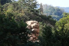 Laoshan lions. There is a stone lion near the Laoshan tidal waterfall, carved with lifelike, angular, and really like a giant lion, there is a small pagoda on Stock Photo
