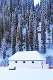 Little House Snow Forest in Winter Royalty Free Stock Photo