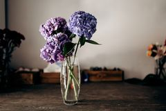 There is a vase with blue and lilac hydrangea on the wooden tabl stock image