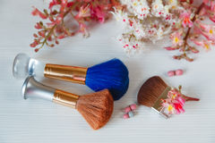 There White and Pink  Branches of Chestnut Tree,Two Make Up Brown and One Blue Brushes are on White Table Stock Photo