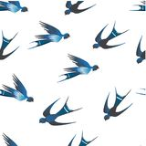 There are wonderful blue swallows on a white background. royalty free illustration