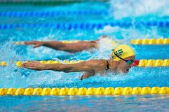 Therese Alshammar ( Sweden). BUDAPEST - AUGUST 13:  Therese Alshammar ( Sweden) in the 2010  LEN Swimming Championships  on August 13, 2010 in Budapest Stock Photo