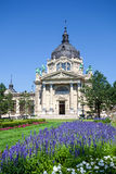 Thermal Baths and Spa, Budapest Stock Images
