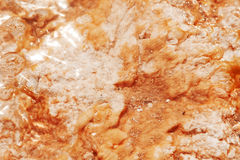 Thermal coral Fotos de Stock