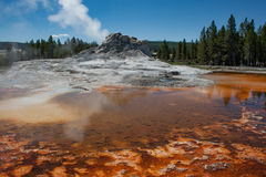 Thermal Geyser cone and Hot Spring with steam rising. Steam rises from the sulfuric Hot Springs in Yellowstone National Park. The vibrant colors of bacteria Stock Images