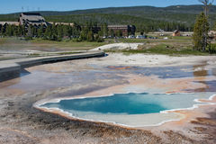 Thermal Hot Spring Sulfur pools in Yellowstone National Park. Pools of hot thermal clear blue water along the boardwalk near the Yellowstone National Park Stock Images