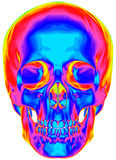 Thermal image of the human skull. Isolated on white background