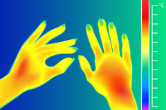 Thermal imager Human hands. The image of arms using Infrared Thermograph. Royalty Free Stock Photography