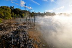 Thermal lake in the Kuirau park in Rotorua Stock Photography