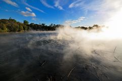 Thermal lake in the Kuirau park in Rotorua. New Zealand stock image