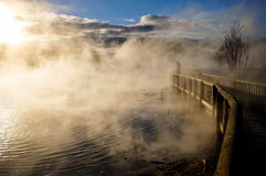 Thermal lake in the Kuirau park in Rotorua. New Zealand royalty free stock photos