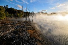 Thermal lake in the Kuirau park in Rotorua. New Zealand stock photography