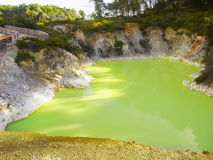 Thermal Lake, Rotorua, New Zealand. Devil's Bath - Thermal green lake, geothermal  area in Rotorua. Wai-O-Tapu Thermal Wonderland. New Zealand Stock Photos