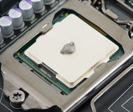 Thermal paste on CPU. Thermal paste on a processor Royalty Free Stock Photos