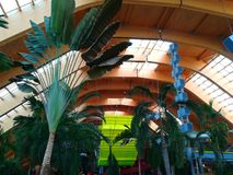 Thermal pool - Galaxy area. At Balotesti, Romania. Therme resort royalty free stock photo