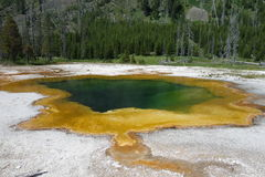 A thermal pool at yellowstone park. Stock Photography